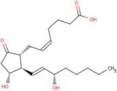 Prostaglandin E2 (PGE2)