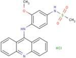 Amsacrine hydrochloride