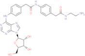 Adenosine amine congener