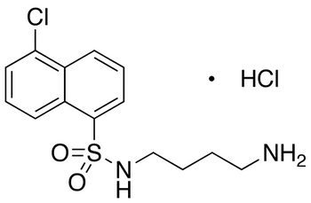 N-(4-Aminobutyl)-5-chloro-1-naphthalenesulfonamide Hydrochloride
