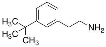 2-(3-tert-Butylphenyl)ethan-1-amine