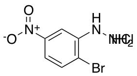 (2-Bromo-5-nitrophenyl)hydrazine hydrochloride
