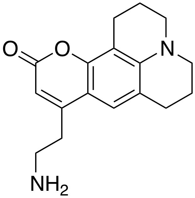 FFN 511