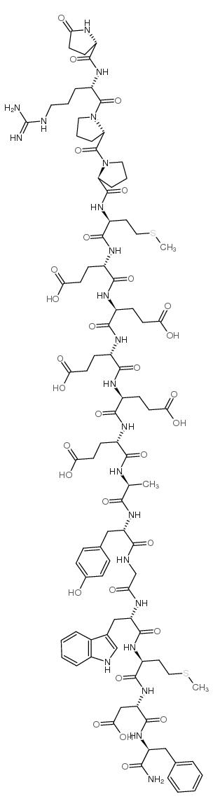 Gastrin-1, rat