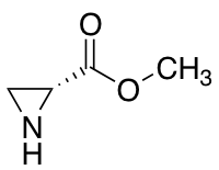 Methyl (R)-Aziridine-2-carboxylate