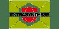 Extrasynthese logo